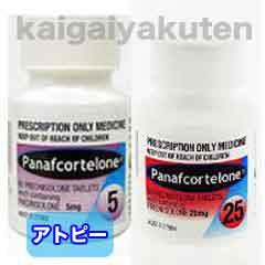 パナフコルテロン【プレドニゾロン】3