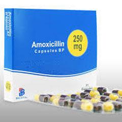 アモキシリン通販2