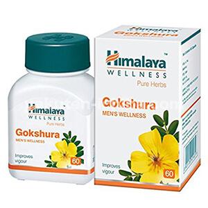 ゴクシュラ3